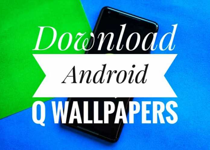Download Android Q Wallpapers